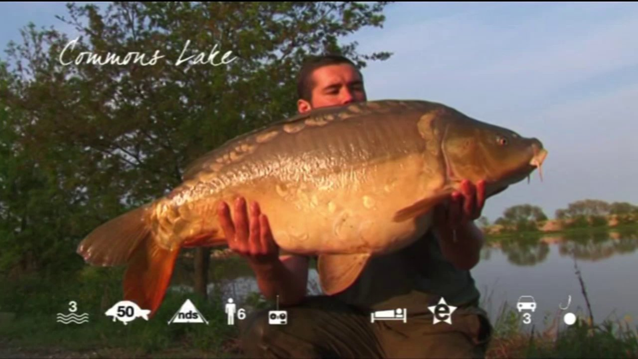 Commons Lake - carp fishing in France