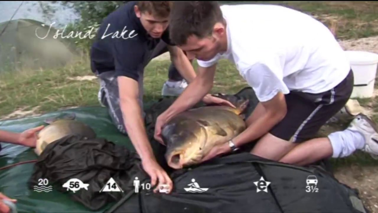 Island Lake - carp fishing in France