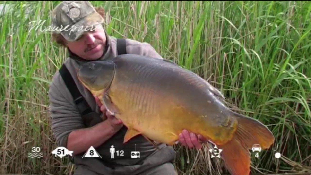 Maurepaire carp fishing holidays