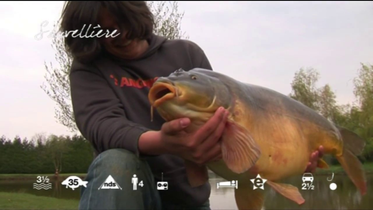 Sauvellière – carp fishing in France