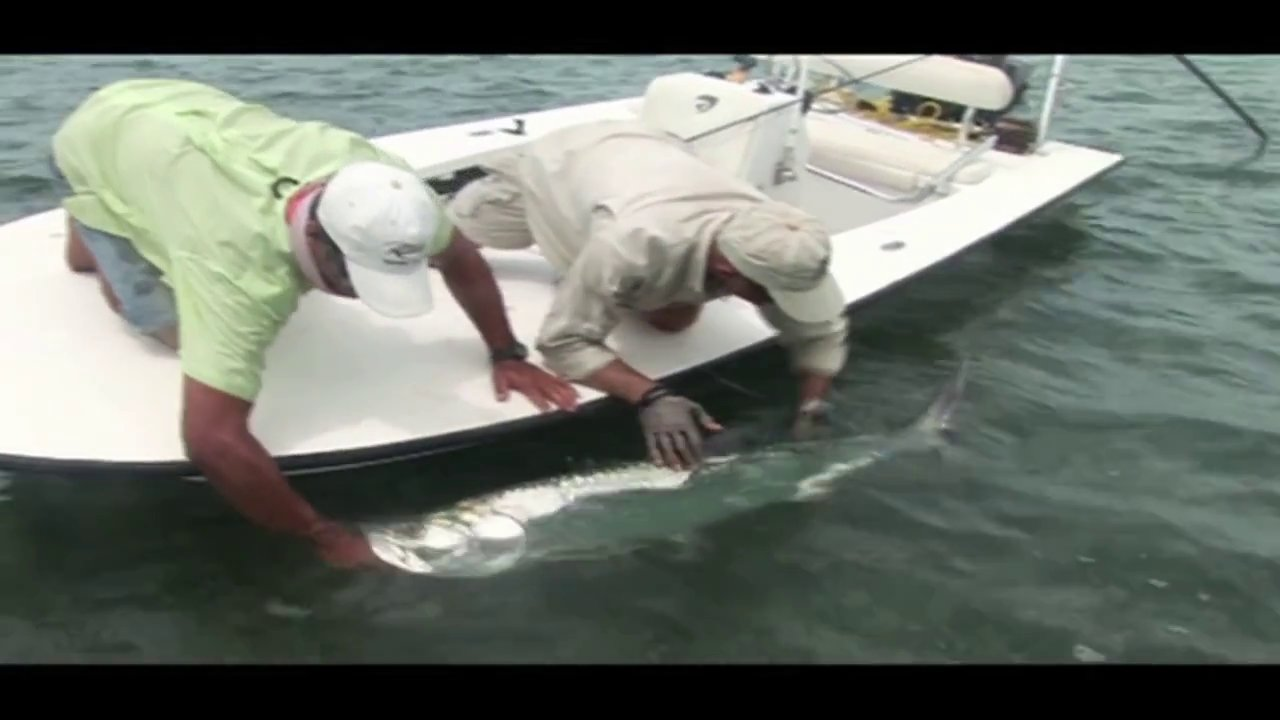 Fly Fishing for Tarpon in Cuba