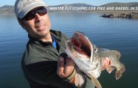 WINTER FLY FISHING FOR PIKE AND BARBEL IN SPAIN