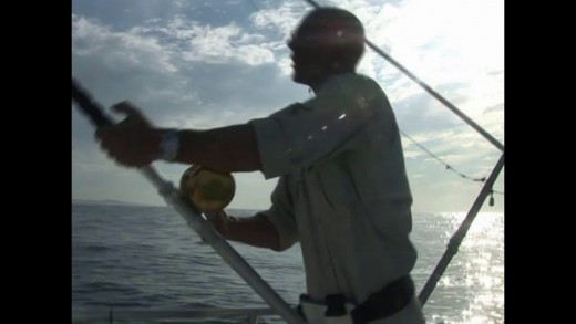 Fishing for Marlin and Yellowfin Tuna