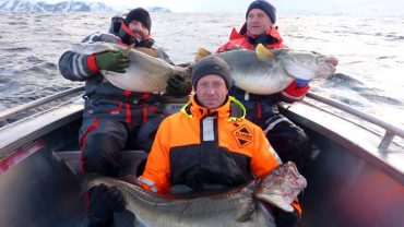 Cod Fishing in Soroya Norway