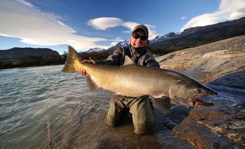 Fly Fishing for King (Chinook) Salmon in Argentina
