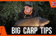 Five Top Tips to Catch Big Carp
